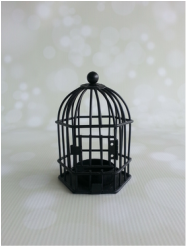 Black Mini Birdcage
